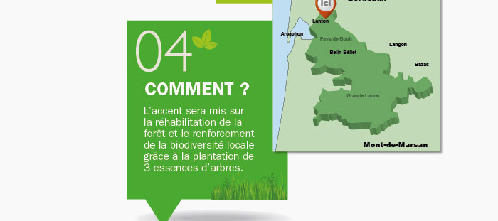 reforestaction_5