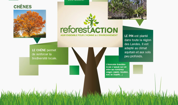 reforestaction_7