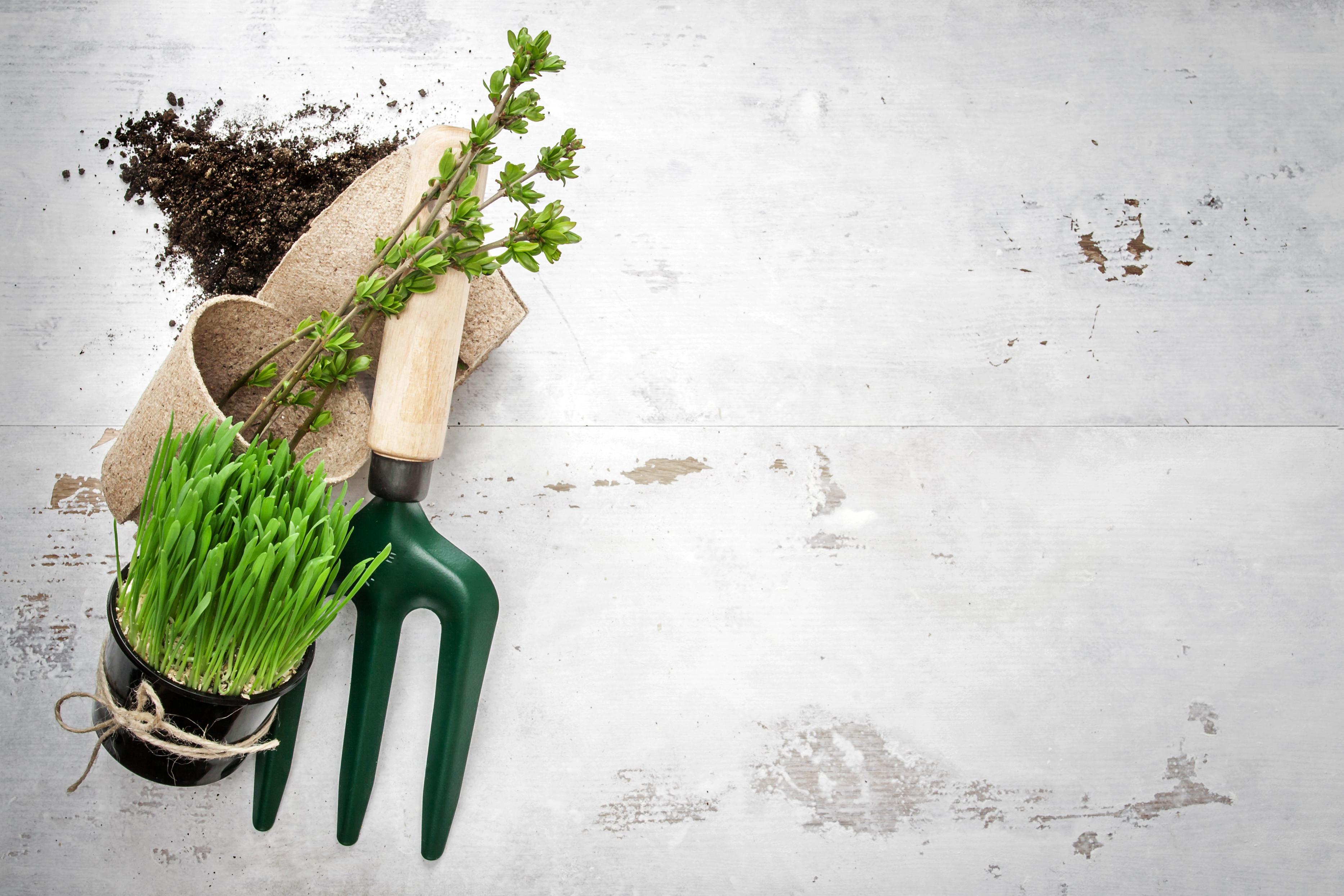 Mettez-vous au vert grâce aux objets publicitaires !
